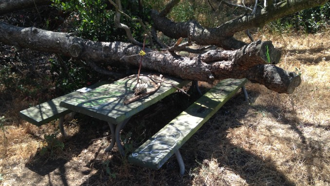 HAUNTED PICNIC TABLE Chasing Horny Ghosts And Urban Legends In - Picnic table los angeles